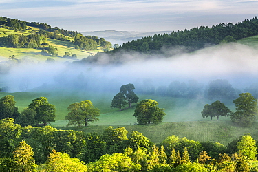Usk Valley near Crickhowell, Brecon Beacons National Park, Powys, Wales, UK, June.