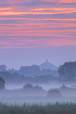 Sunrise over Glastonbury Tor, Somerset Levels, Somerset, England, UK, July.