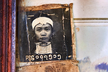 Black and white photograph from the early 1950s showing a Kayan Lahwi woman aged 13, when she started to wear the coils.The Long Neck Kayan (also called Padaung in Burmese) are a sub-group of the Kare...