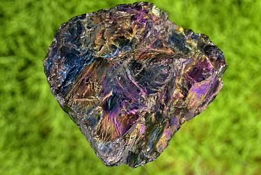 """Coal - """"Peacock coal"""". Pennsylvania, USA."""
