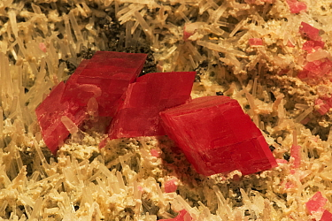 Rhodochrosite (Manganese carbonate mineral) on quartz crystal, Argentina