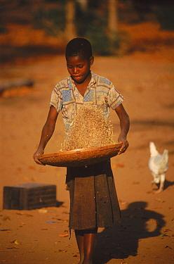 Shangani girl winnowing sorghum. Zimbabwe, Southern Africa