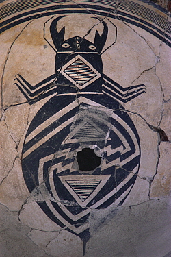 Mimbres bowl detail of beetle 900-1150 AD, museum, Taos Pueblo, New Mexico, USA 1990