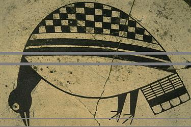 Mimbres bowl detail of bird 900-1150 AD, museum, Taos Pueblo, New Mexico, USA 1990