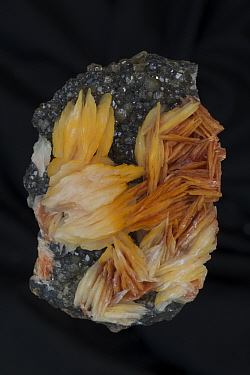 Barite (BaS04) on Cerrusite Mibladen Morocco Barite (orange) is the major ore of barium (barium sulfate) - Mineral class: sulfates - Barite is an important commercial mineral - Widely used as a pigmen...