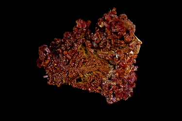 Vanadinite [Pb5(VO4)3Cl - Lead Chlorovanadate] crystals from Mibladen, Morrocco, One of the main ores of vanadium and a minor ore of lead