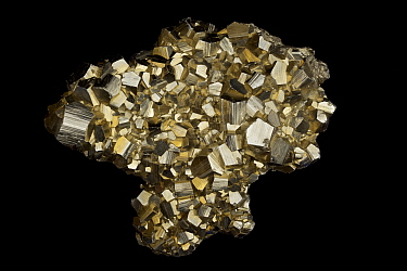 Pyrite (FeS2, iron sulfide), known as 'Fool's Gold'. Formerly used in the production of sulfuric acid. Sample from Concepcion de Oro, Zacatecas State, Mexico.