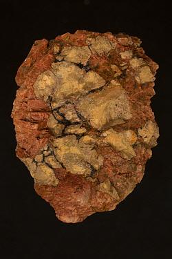 Fluocerite ((Ce,La)F3) from Black Cloud Pegmatite, Divide, Teller County, Colorado, USA.