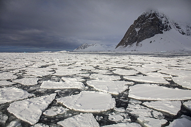 RF - Broken ice in fjord with snow covered mountain. Hornsund, Svalbard, Norway. May 2018. (This image may be licensed either as rights managed or royalty free.)