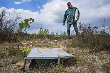 Pitfall trap used for weekly trapping of Ground beetles (Carabidae), researcher approaching in background. Long-term monitoring. has revealed a 72 percent reduction in Ground beetle numbers in past 22...