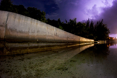 Cement seawall during a lightning storm, The Bahamas. Seawalls that replace mangroves do a worse job at protecting islands, are far more expensive, and don't offer the ecological benefits of mangr...