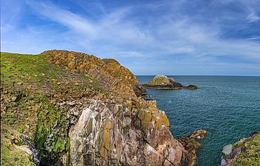 Great Saltee Island, County Wexford, Ireland, May