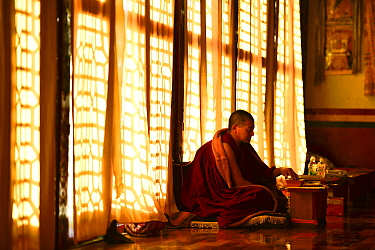 Buddhist lama in worship beside window, Sampheling Monastery, Kham, Tibet, China. 2016.