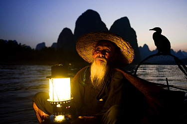 Traditional Chinese fisherman holding lantern / light on raft at dusk with domesticated Cormorant (Phalacrocorax carbo sinensis) used to catch fish, Karst peaks in background. Li River, Yangshuo, Guan...