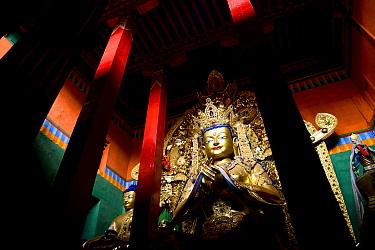 Buddha statue in Palpung Monastery. Kham, Dege County, Garze Tibetan Autonomous Prefecture, Sichuan, China. 2016.
