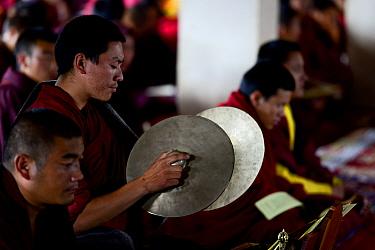 Buddhist monk playing cymbals during mass. Palpung Monastery, Kham, Dege County, Garze Tibetan Autonomous Prefecture, Sichuan, China. 2016.
