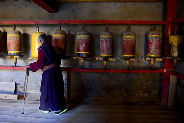 Tibetan Buddhist pilgrim at prayer wheels, praying in Ganden Thubchen Choekhorling monastery. Litang, Garze Tibetan Autonomous Prefecture, Sichuan, China. 2016.