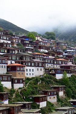 Buildings of Palpung Monastery on mountainside. Kham, Dege County, Garze Tibetan Autonomous Prefecture, Sichuan, China. 2016.