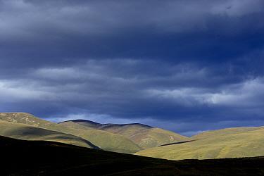 Steppe under stormy sky. Litang, Garze Tibetan Autonomous Prefecture, Sichuan, China. 2016.