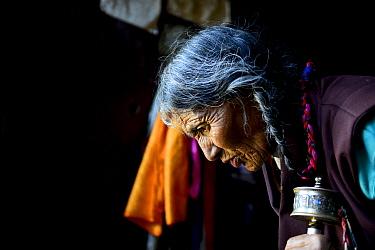 Tibetan Buddhist pilgrim praying in Ganden Thubchen Choekhorling Monastery. Litang, Garze Tibetan Autonomous Prefecture, Sichuan, China. 2016.