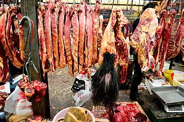 Yak (Bos grunniens) meat for sale on stall in Tibetan market. Litang, Garze Tibetan Autonomous Prefecture, Sichuan, China. 2016.