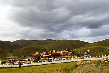 Ganden Thubchen Choekhorling Monastery surrounded by steppe. Litang, Garze Tibetan Autonomous Prefecture, Sichuan, China. October 2016.