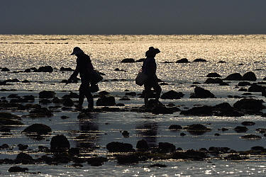 Fishermen on the coast of Land's End spit, the southermost point on the Chinese mainland, Deng Lou Jiao, near Xu Wen, Guangdong province, China November 2015.