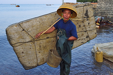 Fisherman of Shi Ma Jiao harbour carrying raft made of styrofoam blocks which he uses to reach his fishing boat at high tide, Guangdong province, China November 2015.