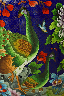Artwork of Peacock (Pavo cristatus) in enamel, on a huge vase, Guangzhou, Guangdong, China November 2015.