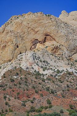 Waterpocket Fold, Navajo sandstone monocline. Capitol Reef National Park, Utah, USA. May 2020.