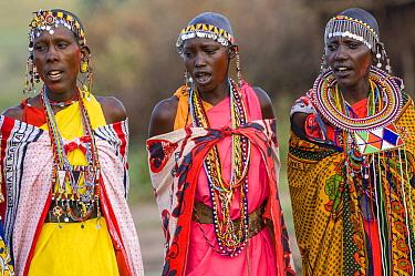 Maasai women singing, wearing traditional dress with with bead jewellery. Maasai Mara National Reserve, Kenya. 2007.