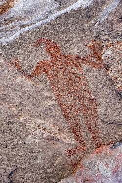 Pictographs depicting mono / person with arms in air, dating from 10,000 years ago. El Palmarito cave paintings, Santa Martha, Sierra de San Francisco, El Vizcaino Biosphere Reserve, Baja California S...