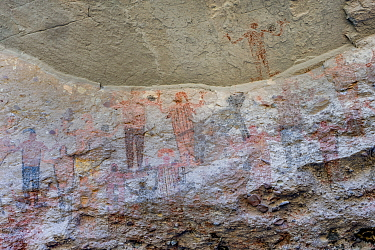 Pictographs depicting people with arms in air and animal, possibly a Coyote. Dating from 10,000 years ago. El Palmarito cave paintings, Sierra de San Francisco, El Vizcaino Biosphere Reserve, Baja Cal...