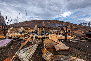 Burnt cabin destroyed by bushfires on the edge of a private pine plantation. . This area was burnt during the 2019/20 Australian bushfires. Goongerah, Victoria, Australia. February 2020?. Property rel...