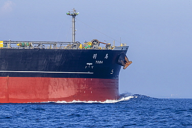 Bow of a large tanker vessel, Mirissa, Sri Lanka, Indian Ocean