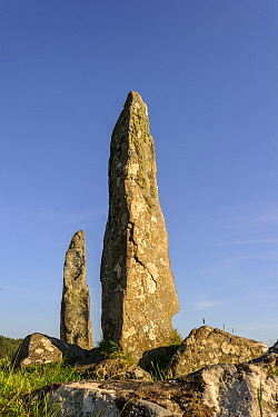 Glengor Standing Stones, Glengorm Estate, Isle of Mull, Scotland, UK. June 2013.