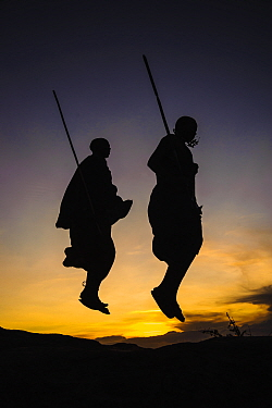 Masaai warriors, two jumping in ceremonial dance, silhouetted at dusk. Ngorongoro Conservation Area, Serengeti National Park, Tanzania. March 2014.
