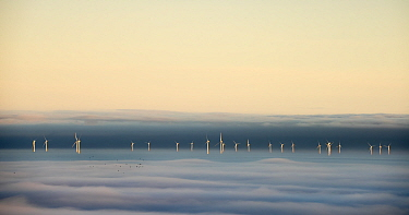 Hoyle Bank Windfarm in fog, with a flock of migrating birds, viewed from near Holywell, Flintsire, Wales, December.