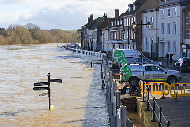 Environment Agency flood defences alongside flooded River Severn. The river overtopped the barriers after Storm Ciara and Storm Dennis, the wettest February recorded in the UK. Bewdley, Worcestershire...