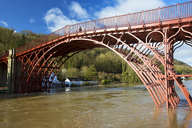 Ironbridge, the world's first cast iron bridge. River Severn in flood conditions following Storm Ciara and Storm Dennis, the wettest February recorded in the UK. Shropshire, England, UK. February...