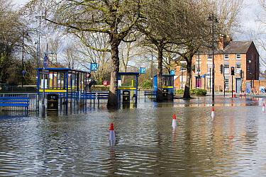Bus station flooded by River Severn. After Storm Ciara and Storm Dennis, the wettest February recorded in the UK. Shrewsbury, Shropshire, England, UK. February 2020.