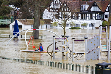 Man kayaking through flooded park inundated with water from River Severn, after Storm Ciara and Storm Dennis during the wettest February recorded in the UK. Shrewsbury, Shropshire, England, UK. Februa...