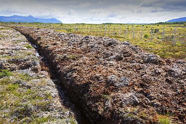 Ditch through peat bog to drain land. Seno Obstruccion, Patagonia, Chile. January 2020.