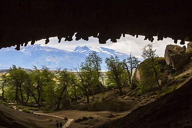 Stalactites on ceiling of Milodon Cave, view out of cave to trees and mountains. Milodon Cave Natural Monument, Magallanes, Chile. January 2020.