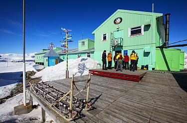 Tourists from expedition cruise ship visiting Vernadsky Station Ukrainian research base, dog sleds in foreground. Galindez Island, Argentine Islands, Antarctica. December 2019.