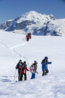 Groups of tourists from expedition cruise ship snow shoeing on Danco Coast, mountains in background. Orne Harbour, Danco Coast, Graham Land, Antarctica. December 2019.