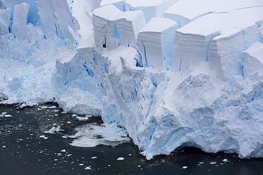 Retreating glacier at coast. Temperatures on the Antarctic Peninsula have risen by three degrees centigrade in last 100 years. Palava Point, Two Hummock Island, Palmer Archipelago, Antarctica. Decembe...