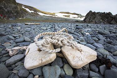 Plastic fishing gear washed ashore onto pebble beach. Robert Island, South Shetland Islands, Antarctica. January 2020.