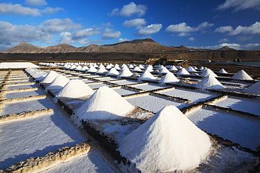 Salt pans at Salinas de Janubio saltworks, mountains in background. Lanzarote, Canary Islands, Spain. November 2019.