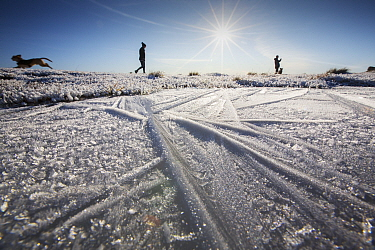 Ice patterns in frozen puddle on summit of Ingleborough, people walking dogs in background. Yorkshire Dales National Park, England, UK. December 2019.